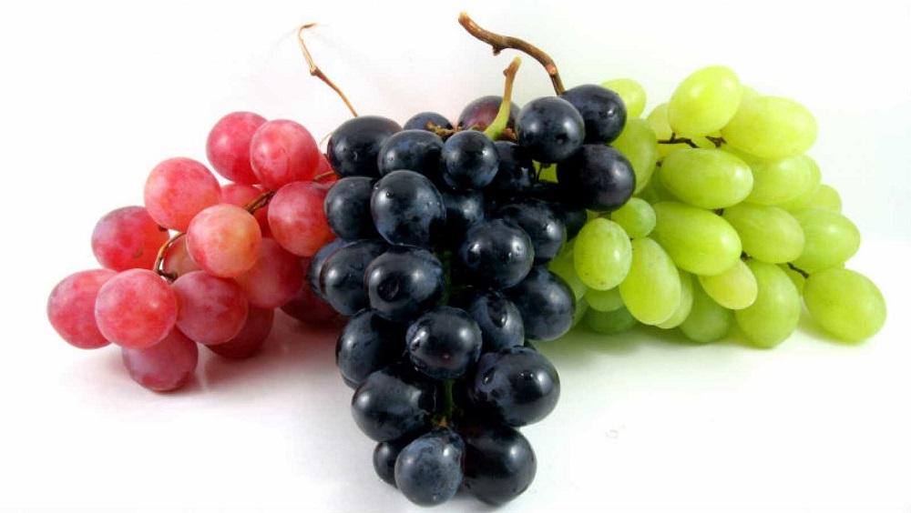 bakteriális rák a szőlőben gyomorrák bormann
