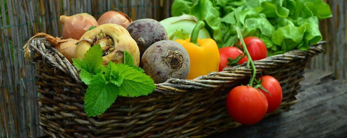 a táplálkozási tanácsadó által ajánlott étrend