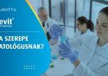 Mit csinál a patológus?